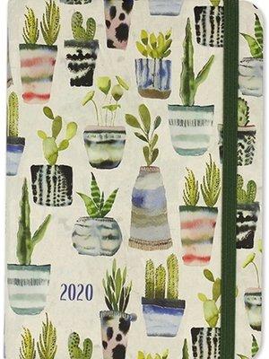 Comello Comello - Agenda - 16 Maanden - Cactussen - 2020