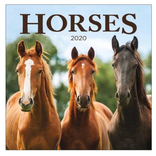 Comello Comello - Maandkalender - Horses - 2020