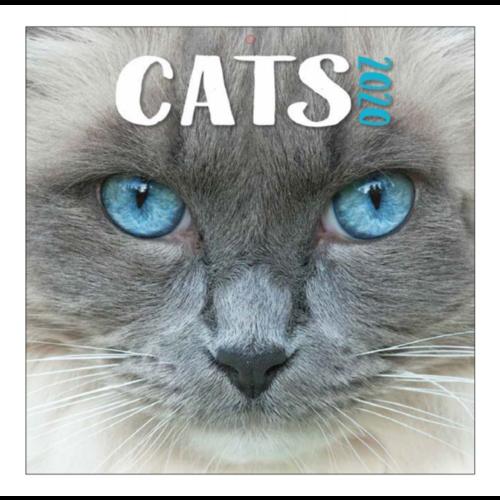 Comello Comello - Maandkalender - Cats - 2020