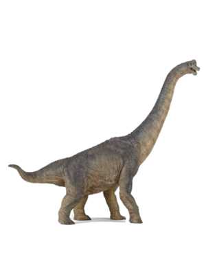 Papo Papo - Dinosaurus - Brachiosaurus