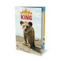 Uitnodigingskaarten - The lion king - 6st.
