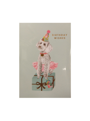 Lannoo Lannoo - Kaart - Louise Tiler - Birthday wishes - FA014