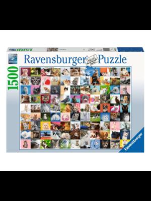Ravensburger Puzzel - 99 Katten - 1500st.