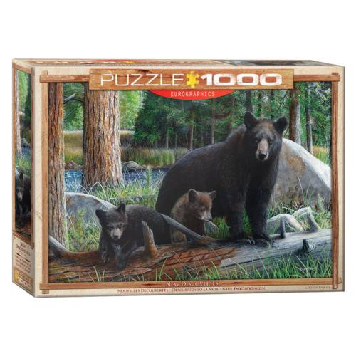 Eurographics Puzzel - Berenfamilie - 1000st.