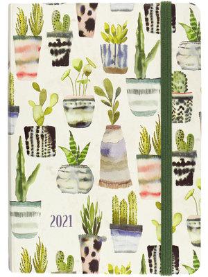 Peter Pauper Agenda - Compact - 16 maanden - Cactus aquarellen - 12,7x17,8cm - 2021
