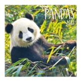 Kalender - 2021 - Panda#039s - 30x30cm - in Kalenders