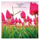 Kalender - 2021 - Tulpen - 30x30cm - in Kalenders