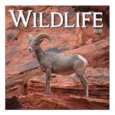 Kalender - 2021 - Wildlife - 30x30cm
