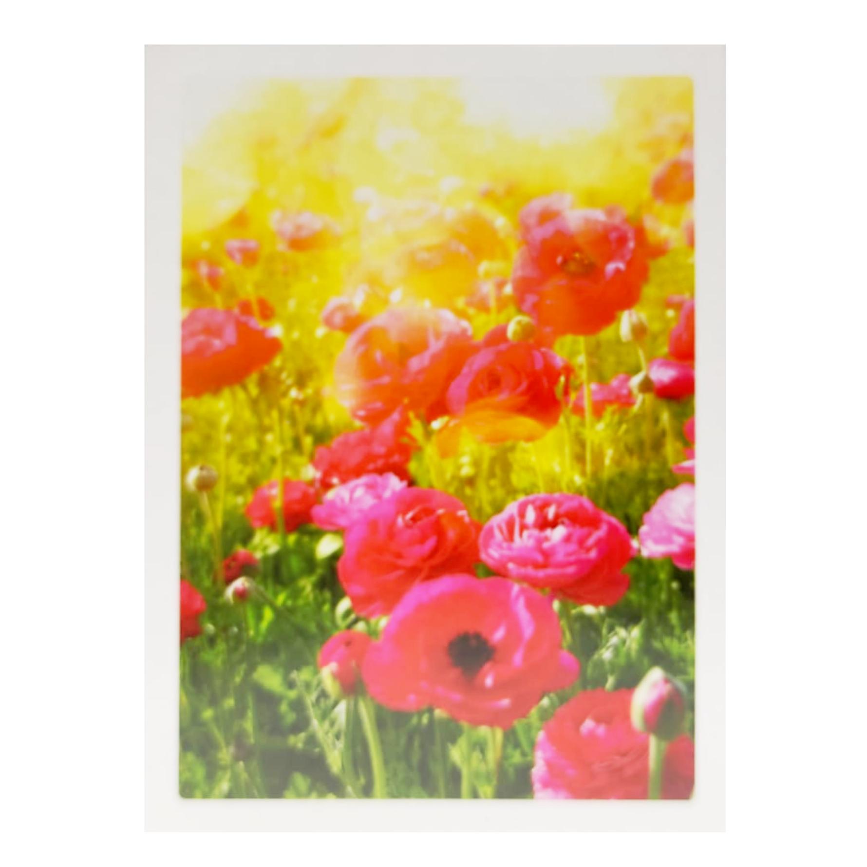 Kaarten Eco Cards