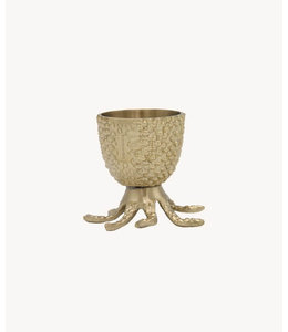 OCTO EGG CUP