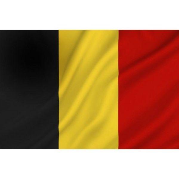 Belgische vlag - 20 x 30 cm