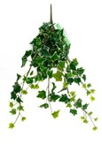 Kunstplant Ivy Green/white hanging bush