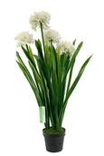 Kunstplant Agapanthus White