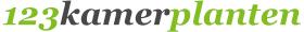 Kamerplanten, Plantenbakken en hydrocultuur