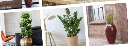 Online plantenbakken kopen