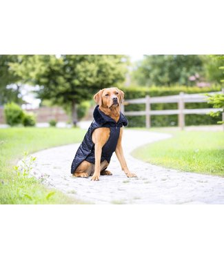 Eskadron Dog Coat Platinum GLOSSY -limited edition