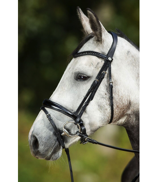hfi Luxe Bridle