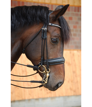 Dy'on Large Crank Flash Noseband Double Bridle Patent Black Leather - Black Padding