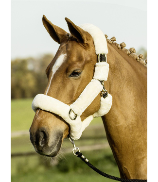 Busse Headcollar Guard