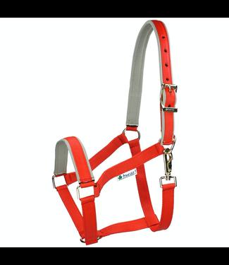 Bucas Dublin Foal Halter, Red/Silver