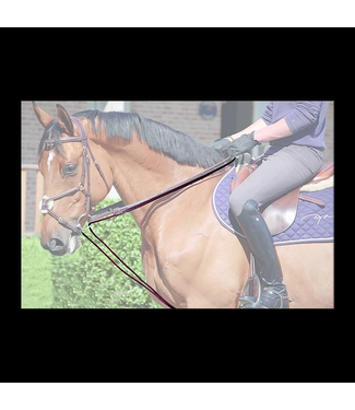 Dy'on Draw Reins Cuir + Corde Brown Cob