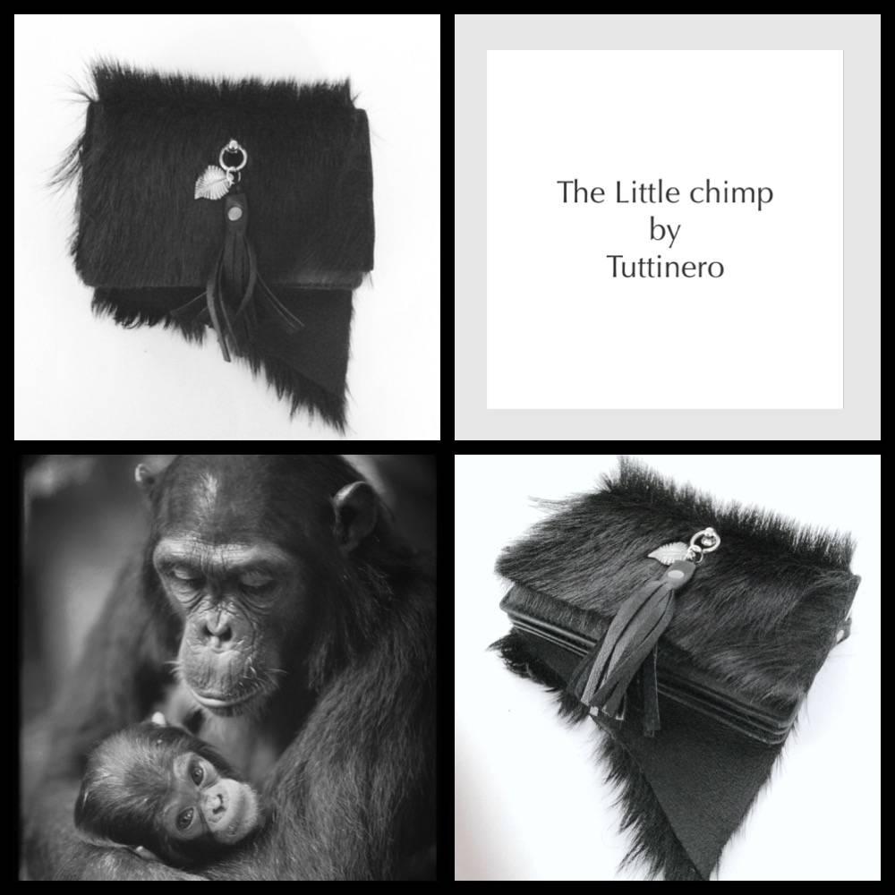 The Little Chimp