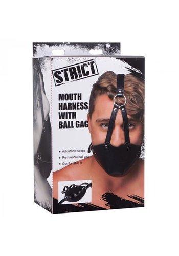 Strict Mond Masker Met Ballgag