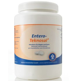 Entero-Teknosal® - Kautabletten, 300 Stück