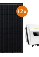 Actie-pakket 12 DMEGC 300 Wp full black  Zeverlution 3000S