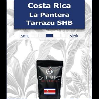 Costa Rica La Pantera Tarrazu