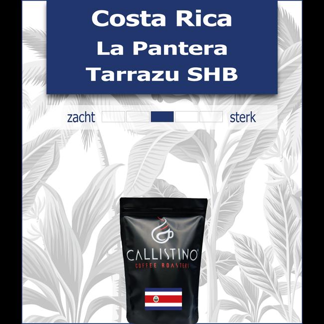 Costa Rica La Pantera Tarrazu SHB
