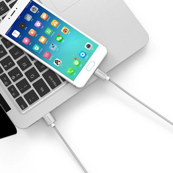 Orico Câble de charge et de données USB Type-C - 3A - Nylon tressé - Aluminium - 1 mètre - Argent