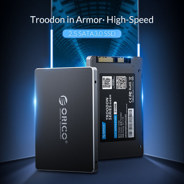 Orico 2,5 Zoll interne SSD 1 TB - Troodon-Serie - 3D-NAND-Blitz - Himmelgrau