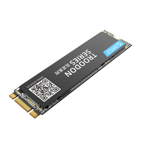 Orico M.2 interne SSD 2280 - 128GB - Troodon serie - 3D NAND flash - Zwart