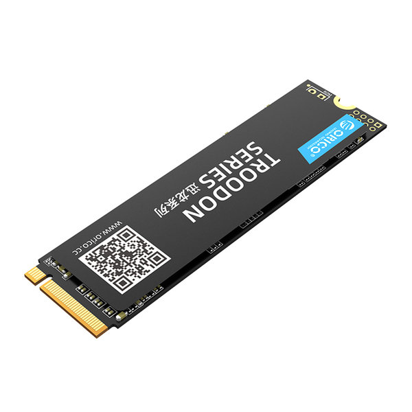 Orico M.2 NVMe interne SSD 2280 - 128 GB - Troodon-Serie - 3D-NAND-Blitz - Schwarz