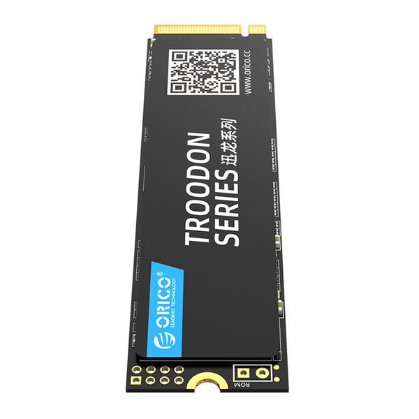 Orico SSD interne M.2 NVMe 2280 - 1 To - Série Troodon - Flash NAND 3D - Noir