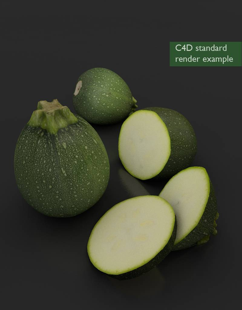 3D model round courgette - zucchini