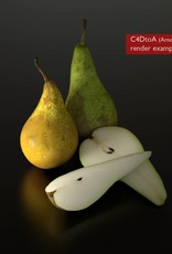 3D models of  Pears (Conference)