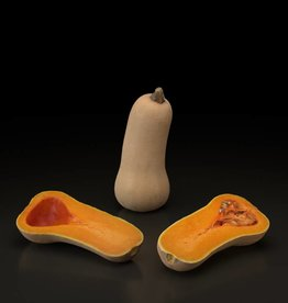 Butternut pumpkin-squash