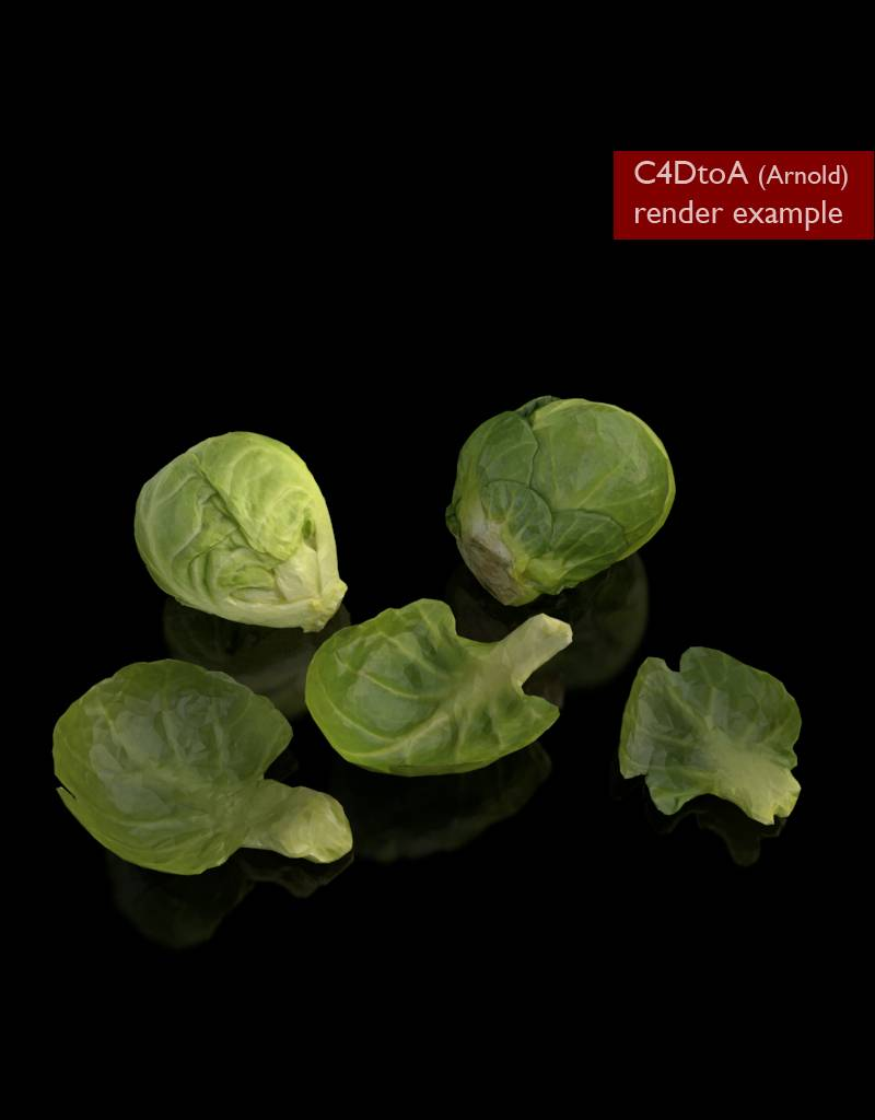 3D model Brussels sprouts