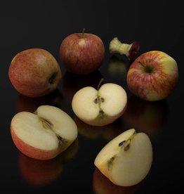 Elstar apple