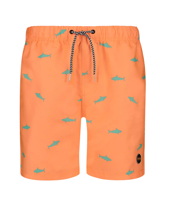 Shiwi zwemshort oranje vis
