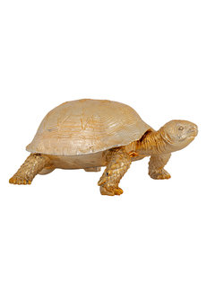 Richmond Interiors Decoratie box Turtle (Goud)