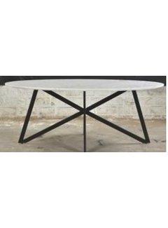 Livingfurn DT- Marble Oval Web  White  210cm