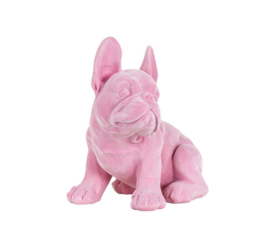 Dog Miro Pink (Roze)