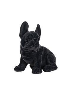 Richmond Interiors Dog Miro Black (Zwart)
