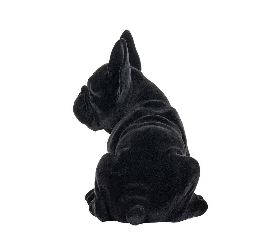 Dog Miro Black (Zwart)