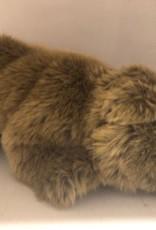 Ijsbeer bruin