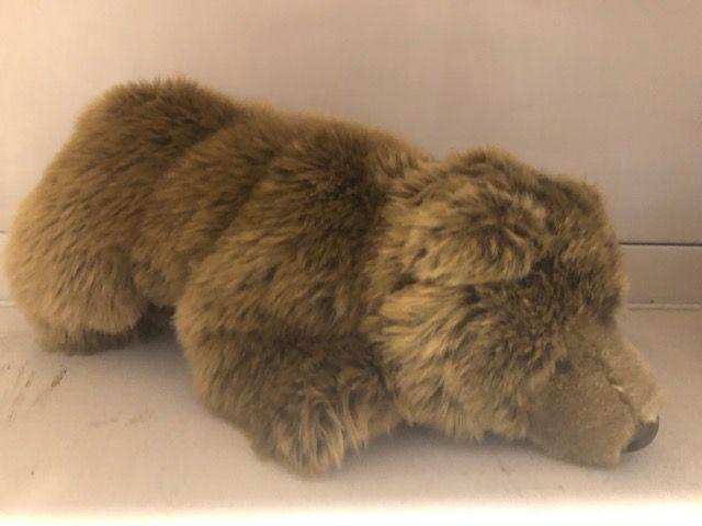 Polar bear brown
