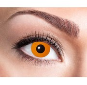 Eyecatcher Halloween Orange | Jaarlenzen
